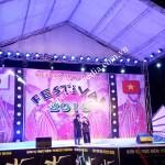 Tổ chức sự kiện Festival Toyo Denso Việt Nam 2015